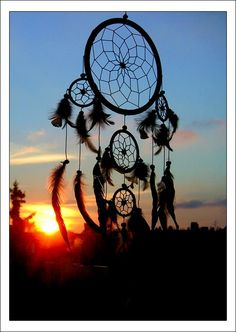Dream catcher shared by Sthephany on We Heart It Dreamcatcher Wallpaper, Bad Dreams, Sweet Dreams, Sun Catcher, Native American Indians, Indian Art, Wind Chimes, The Dreamers, Nativity