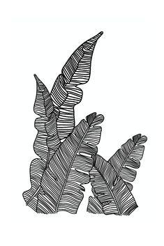 Minimalist line art created for the perfect wall art piece. Download, Print and Hang. Easy printable wall art for the perfect gift.   #minimalist #wallart #lineart #flowerwallart #linedrawing #goddess #printable #digitaldownload #tropical #bananaleaf #botanicalwallart