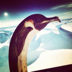 JS - Pinguin