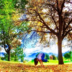 """""""Kiss your life. Accept it Just as it is. Today. Now. So that  those moments of happiness  you're waiting  for don't pass you by.""""  via @powerofspeech    #stopdropandyoga during my walk for the amazing @tammyquen coupled with #yogiphotocontest and Day 1 #FallBalance #bakasana #cranepose . @yogini_bunny @beeleeyoga @handstandhavoc if/when you want #strikeapose .    @briancrawfordphotography @jeannevergerjewelry @fitrebelapparel @yoginidemi @yinandjuice @loveasc @mikayogawear by…"""