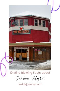 10 Mind Blowing Facts about Juneau, Alaska that Cruisers Should Know Hydroelectric Power, Juneau Alaska, Mind Blowing Facts, By Plane, Alaska Cruise, Sea Level, Travel Planner, Capital City, British Columbia