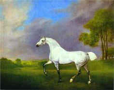 A Grey Horse - George Stubbs