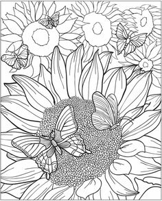 Dover Publications – loved their coloring books as a kid and their paper dolls – so getting these for the […] Make your world more colorful with free printable coloring pages from italks. Our free coloring pages for adults and kids. Coloring Pages For Grown Ups, Coloring Book Pages, Coloring For Kids, Printable Coloring Pages, Coloring Sheets, Sunflower Coloring Pages, Butterfly Coloring Page, Doodle Coloring, Mandala Coloring