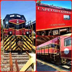fun on the premierrails cape cod railroad - Train To Christmas Town