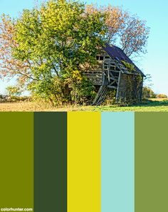 """'falling Down"""" Fall Foto Color Scheme from colorhunter.com"""