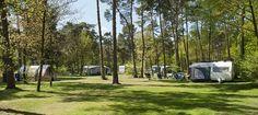 102 km Kampeerplaats RCN het Grote Bos Doorn