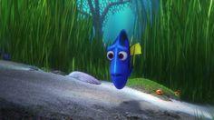 Finding Dory – UK Trailer – Official Disney Pixar   HD