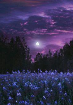 Night Sky Wallpaper, Purple Wallpaper, Aesthetic Pastel Wallpaper, Scenery Wallpaper, Aesthetic Backgrounds, Wallpaper Backgrounds, Aesthetic Wallpapers, Beautiful Nature Wallpaper, Beautiful Landscapes