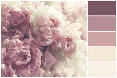 Peony - Floral Wall Mural in Pale Pink and Off-White, Peony Roses - Vintage Flowers Wallpaper, Floral Decor, Dusty Pink Nursery décor Colour Pallette, Color Palate, Vintage Flowers Wallpaper, Pallet Painting, Design Seeds, Floral Wall, My New Room, Bedroom Colors, Pantone Color