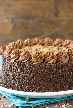 Outrageous Chocolate Coconut Cheesecake Cake - layers of chocolate cake, brownie, coconut chocolate chip cheesecake and coconut pecan filling! Coconut Cheesecake, Chocolate Chip Cheesecake, Cheesecake Cake, Chocolate Frosting, Mini Chocolate Chips, Cheesecake Recipes, Chocolate Cake, Dessert Recipes, Appetizer Recipes