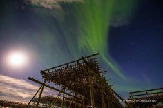 Auroras boreales y la Luna desde las islas Lofoten, Noruega – El Universo Hoy
