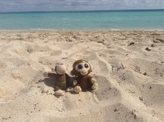 Cayo Coco, Cuba. Here's Coco and Jojo relaxing on the beach at Hotel Colonial.