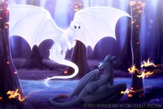 Toothless and Light Fury with Fireworms Httyd Dragons, Got Dragons, Dreamworks Dragons, Disney Pixar, Disney And Dreamworks, Wings Of Fire Dragons, Dragon Trainer, Most Beautiful Animals, Night Fury