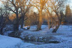 Beautiful Winter Scene in Arvada, Co