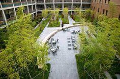 Landscape at architecture at retirement centre - Sun City Takarazuka. Credit: Tom Fox