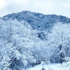 "@fivestar77777's photo: ""もう一枚!❄️✨ #安曇野#雪#雪道#白銀の世界#雪山#道"""