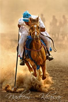 Tent pegger   Today, tent pegging is practised around the wo…   Flickr