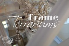 Glue Thrift Shop Frames Into a House Shape and You ve Got a Terrarium!