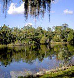 Georgia Lakes