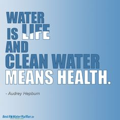 Over 200 best save water quotes and sayings to understand the importance of water for life. Save water slogans for your speech, school essay, and debate. Save Water Quotes, Save Water Slogans, Save Earth Save Life, Save Water Drawing, Health Slogans, Conservative Quotes, Shark Conservation, Importance Of Water, Water Poster