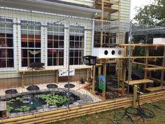 Photo of Purrfect Catio - Charlotte, NC, United States. Cat Habitat, Cat Kennel, Outdoor Cat Enclosure, Cat Cages, Cat Run, Cat Towers, Cat Playground, Cat Garden, Outdoor Cats