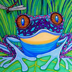 Bright Eyed Frog by Nick Gustafson Lily Pad Drawing, Frog Drawing, Learn Watercolor Painting, Red Eyed Tree Frog, Frog Pictures, Glass Frog, Frog Art, Cute Frogs, Frog And Toad