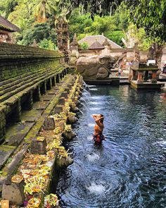 75 Extraordinary Things To Do in Bali - Places to visit, eat and everything Bali Places To Visit, Best Of Bali, Temple Bali, Stuff To Do, Things To Do, Water Temple, Hidden Beach, Paradise Island, Bali Travel