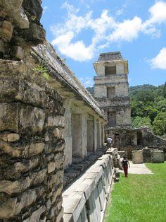 Palenque Chiapas Mexican mayan ruins
