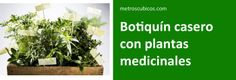 """Botiquín casero con plantas medicinales. ¿Recuerdas los """"remedios de la abuela""""? El 70% de los principios activos de las medicinas que existen en la actualidad se obtienen de plantas medicinales."""