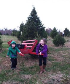 Busy city dwellers could be forgiven for forgetting that Christmas trees don't naturally grow on cement corner lots. But during the holiday hustle there's no better way to slow down with the fam for a few hours than heading out of town to a tree farm and cutting down your own. (Added bonus: 20 minutes of swinging an ax burns about 120 calories. That's enough to earn you some cocoa and cookies...