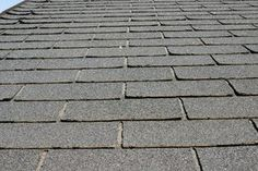 Preserve your roof by removing moss and lichen promptly.