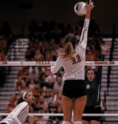 Volleyball Photography, Teenage Love, Volleyball Pictures, Surfs, American Football, Skiing, Gym, Sport, High School