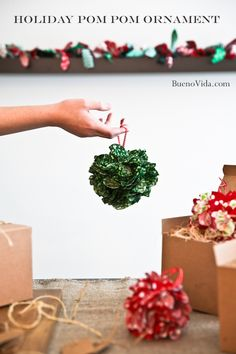 holiday pom pom ornament (copyright danabueno)
