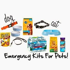 Emergency Kits For Pets! However, don't use crap food and treats incase of allergies Emergency Food Supply, Emergency Preparation, Emergency Supplies, Emergency Kits, 72 Hour Kits, Disaster Preparedness, Disaster Kits, In Case Of Emergency, Survival Tips