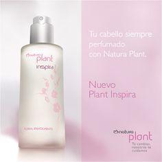 La fragancia inconfundible de nuestra línea Plant Hidratación Reparadora perfumando tu cabello en cualquier momento del día.