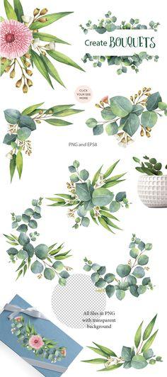 Watercolor Eucalyptus. by Elena Medvedeva on @creativemarket
