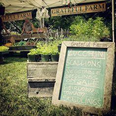 The Grateful Farm stand at the Franklin Farmers Market- #FranklinMA #Massachusetts