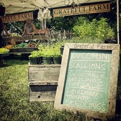 The Grateful Farm stand at the Franklin Farmers Market- #FranklinMA #Massachusetts