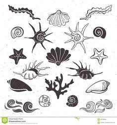 seashell starfish small tattoo - Google Search