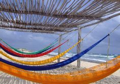Best Rated Shore Excursions & Cruise Excursions in Cozumel, Mexico