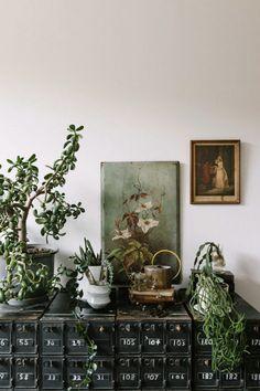 friday finds. Style Vintage, Vintage Decor, Vintage Furniture, Vintage Inspired, Vintage Country, Country Style Magazine, Melbourne, Deco Retro, Planting Succulents