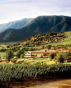 Chile Uncorked- places to visit and taste great Chilean Wines