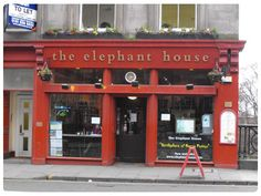 the elephant house cafe in edinburgh, Scotland where J.K. Rowling wrote the first Harry Potter