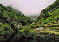 Parque Nacional de Garajonay, Ilhas Canárias