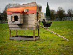 Reclaimed cedar chicken coop