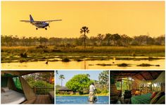 check out our new packages at Footsteps in Africa, a perfect way to get away with the family, and a perfect way to spend the holidays with the kids, with various activities available in the different camps, Botswana never looked so good ! visit AfricaMemoriesTravel.com or email us at info@africamemoriestravel.com