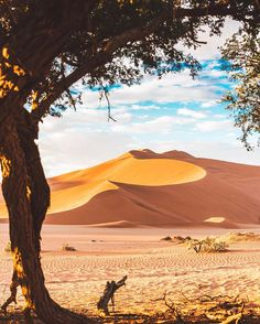 Namibia Out Of Africa, East Africa, Safari, Provinces Of South Africa, Namib Desert, Namibia, Destinations, Pictures To Paint, Landscape Photos
