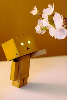 I love this Danbo, because he doesn't have amazon.co.jp in his head. But this one has creepy eyes huh ~~~ (\'o')/