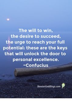 The will to win, the desire to succeed, the urge to reach your full potential:  these are the keys that will unlock the  door to personal excellence. ~Confucius