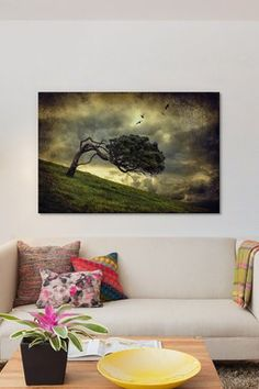 Winds Of Change by Peter Elgar Canvas Print
